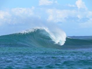surf samoa, hike samoa, manoa tours samoa, waves samoa, hike samoa
