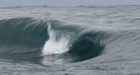 Surf Samoa Surfing