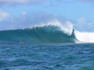 surf samoa, waves in samoa, surf spots samoa, manoa tours samoa
