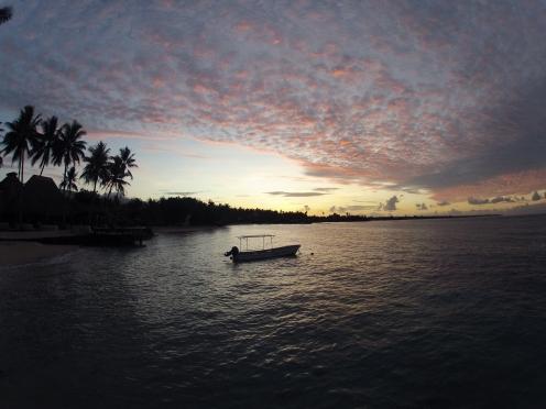 surf samoa, boat samoa, manoa tours samoa, boulders, coconuts, surf spots samoa
