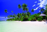 Virgin_Cove_Samoa