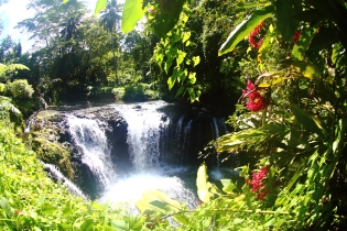 hike samoa, waterfalls samoa, manoa tours samoa,samoa surf